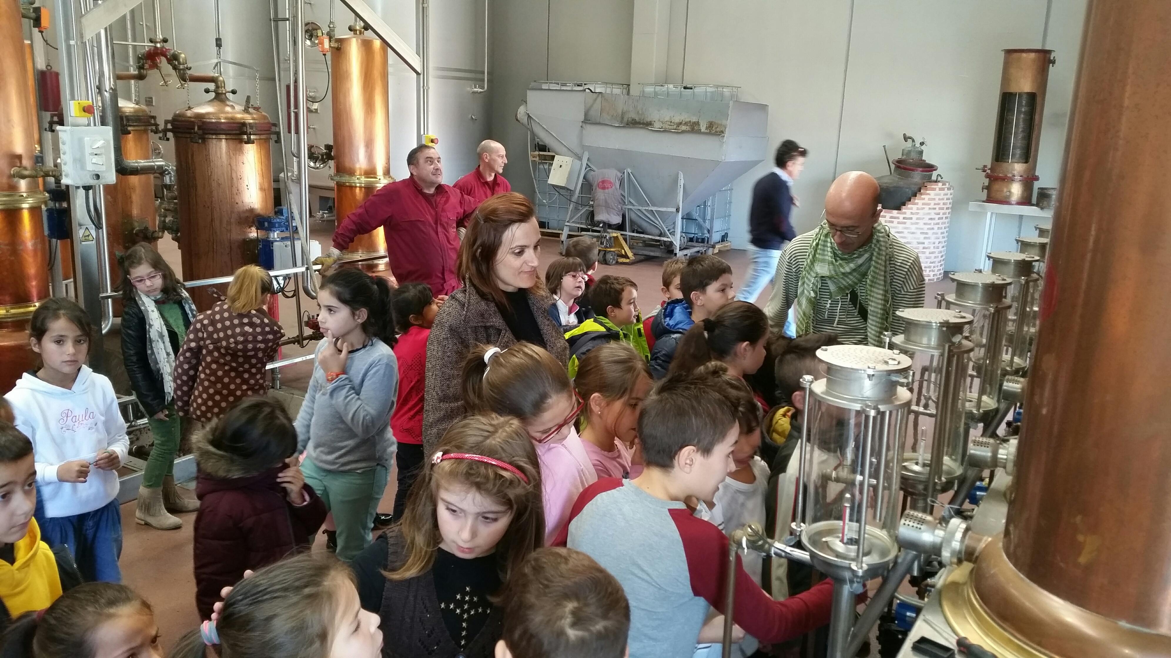 Visita alumnos primaria alumnos CEIP El Tera